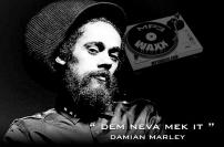 Damian_Marley_-_Dem_Neva_Mek_It_(2013)